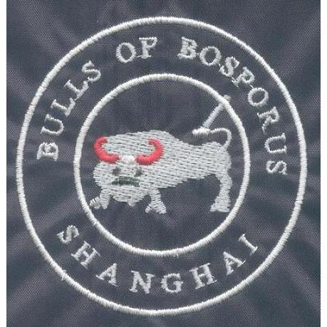 Former Logo of Bulls season 2000/2001 to 2004/2005